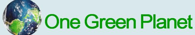 1 Green Planet